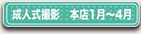 成人式1月から4月のボタン