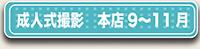 成人式9月から11月のボタン